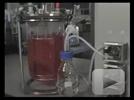 Eppendorf New Brunswick BioFlo/CelliGen 115 Fermentor and Bioreactor
