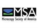 Microscopy & Microanalysis 2015