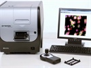 BioTek Cytation 5 Cell Imaging Multi-Mode Reader