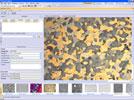 OLYMPUS Stream® Image Analysis Software
