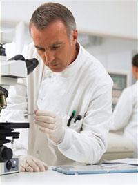 显微镜附件