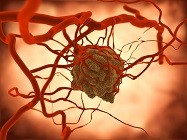 Oncology Diagnostic Assay Kits
