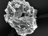 Profiling Particles