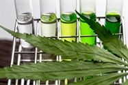 Testing for Metals in Cannabis