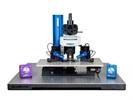BOB™ Open-Design Upright Microscope