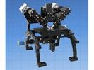 The RAMM / MIM Platform for Microscopy