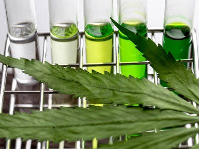 Testing for Contaminants in Cannabis Products