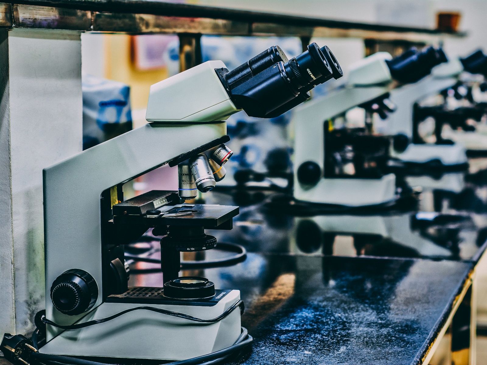 显微镜的解剖——放大的概念
