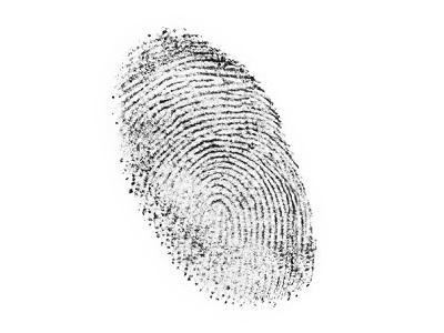 Fingerprint Analysis Labcompare Com