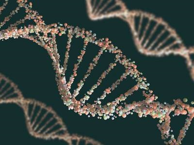Nucleic Acid Purification Instruments