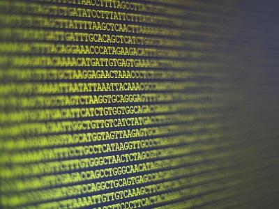 Next Generation DNA Sequencer