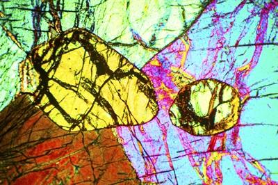 Polarizing Microscope