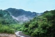 Narcotics Traffic Devastating Central American Rainforests, Fueling Climate Change