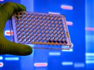 Oregon Bill Simplifies Access to Post-Conviction DNA Testing
