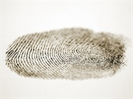 Technique Suggests Adding UV/IR Photography to Fingerprint Retrieval Process